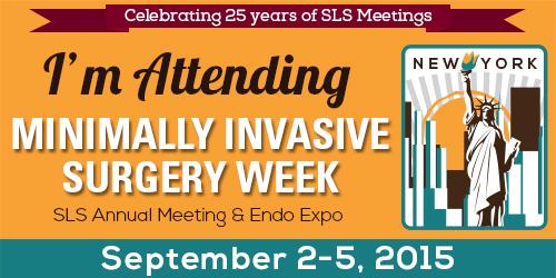 MIS Week 2015 NYC 2-5th Sept 2015